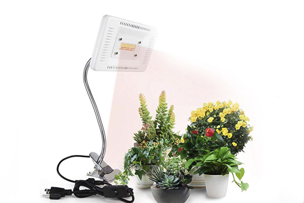 Plant light and plant, she's red haute, top 10 holiday gift ideas